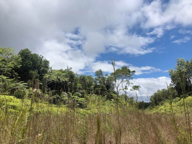 Ihope Rd, Mountain View, HI 96771 (MLS #641136) :: Iokua Real Estate, Inc.