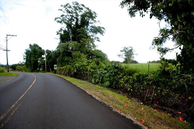 205 Hoaka Road, Hilo, HI 96720 (MLS #641243) :: Team Lally