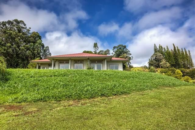 44-3153 Kula Kahiko Rd, Paauilo, HI 96727 (MLS #641311) :: Elite Pacific Properties