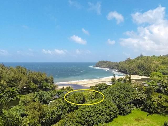 5-6636 Kuhio Hwy, Hanalei, HI 96722 (MLS #641379) :: Corcoran Pacific Properties
