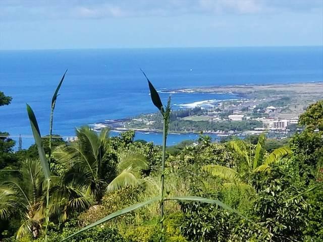 Address Not Published, Kailua-Kona, HI 96725 (MLS #641411) :: Steven Moody