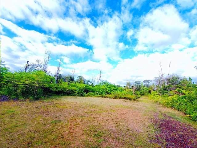 13-3582 Kumakahi St, Pahoa, HI 96778 (MLS #641414) :: Elite Pacific Properties