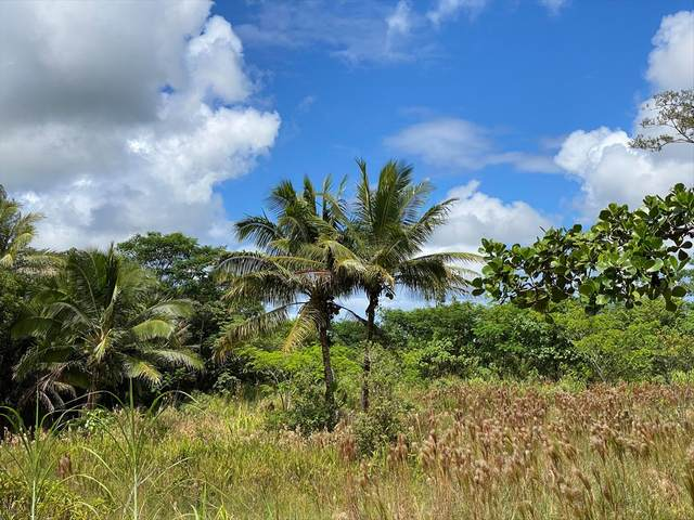 15-2765 Pahoa Village Rd, Pahoa, HI 96778 (MLS #641498) :: Iokua Real Estate, Inc.