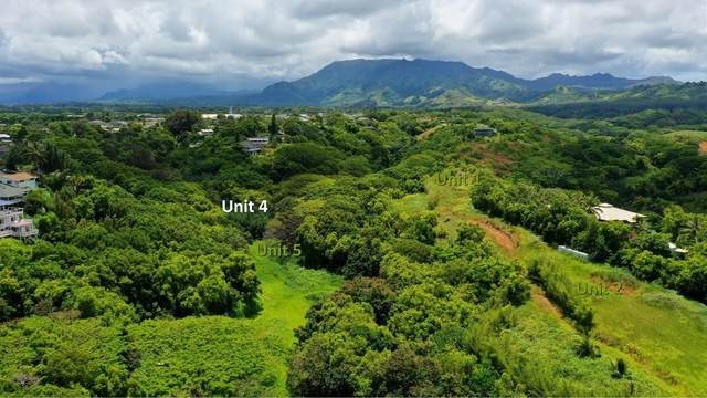 5409 Laipo Rd, Kapaa, HI 96746 (MLS #641602) :: Aloha Kona Realty, Inc.