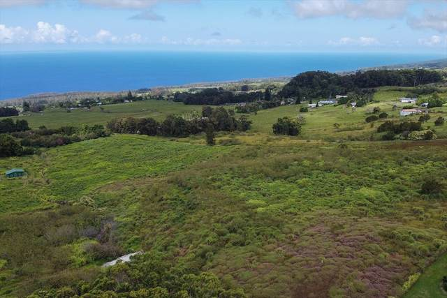 Kalopa Mauka Road, Honokaa, HI 96727 (MLS #641618) :: Corcoran Pacific Properties