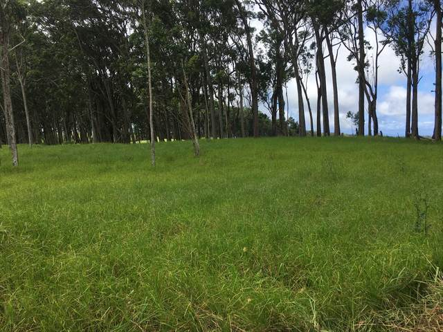 Address Not Published, Kamuela, HI 96743 (MLS #641698) :: Steven Moody