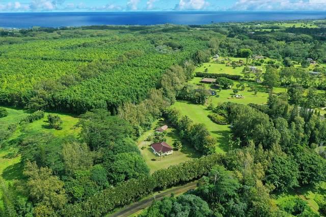 4828-A Kuawa Rd, Kilauea, HI 96754 (MLS #641763) :: Team Lally