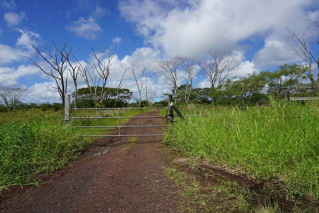 17-4658 Huina Road, Kurtistown, HI 96771 (MLS #641795) :: Hawai'i Life