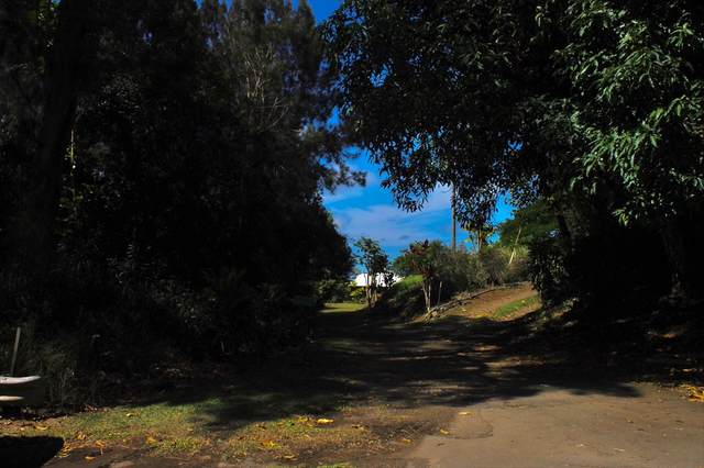 Address Not Published, Honokaa, HI 96727 (MLS #641870) :: Steven Moody