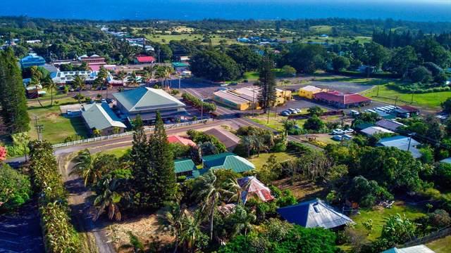 55-532 Banana Ranch Rd, Hawi, HI 96719 (MLS #641941) :: LUVA Real Estate