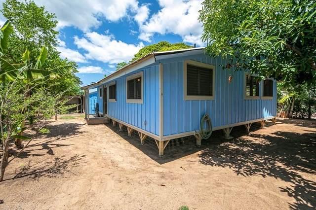 4590-G Io Rd, Kekaha, HI 96752 (MLS #641978) :: Song Team | LUVA Real Estate