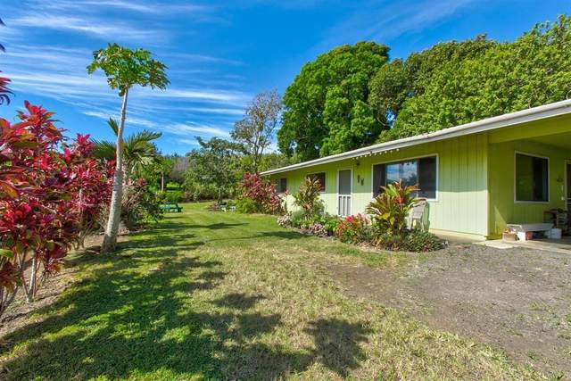 53-4190 Akoni Pule Hwy, Kapaau, HI 96755 (MLS #641999) :: LUVA Real Estate