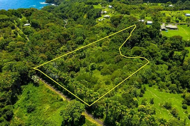 Address Not Published, Pepeekeo, HI 96783 (MLS #642003) :: Song Team   LUVA Real Estate