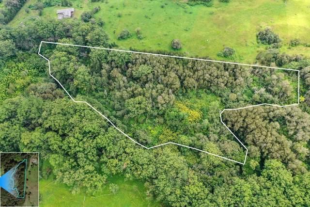 Kahana Dr, Honokaa, HI 96727 (MLS #642107) :: LUVA Real Estate