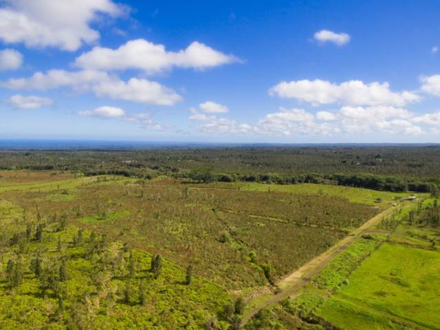 S Pszyk Rd, Mountain View, HI 96771 (MLS #642184) :: Corcoran Pacific Properties
