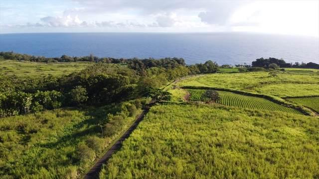 31-625 Old Mamalahoa Hwy, Hakalau, HI 96710 (MLS #642311) :: Corcoran Pacific Properties