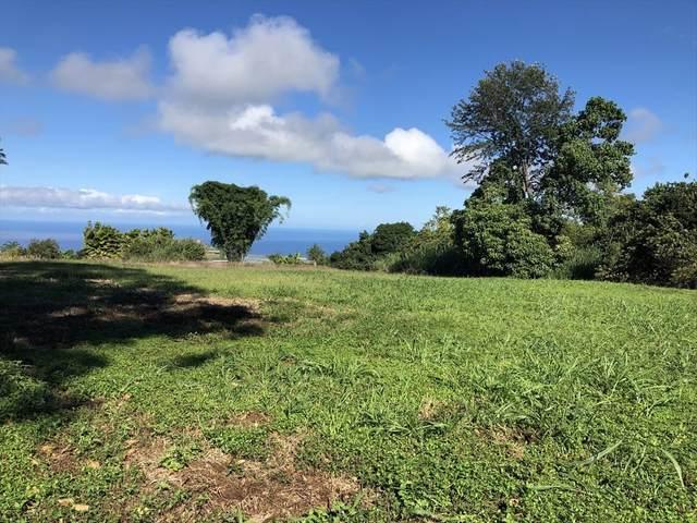 75-1085 Kamalani St, Holualoa, HI 96725 (MLS #642325) :: LUVA Real Estate