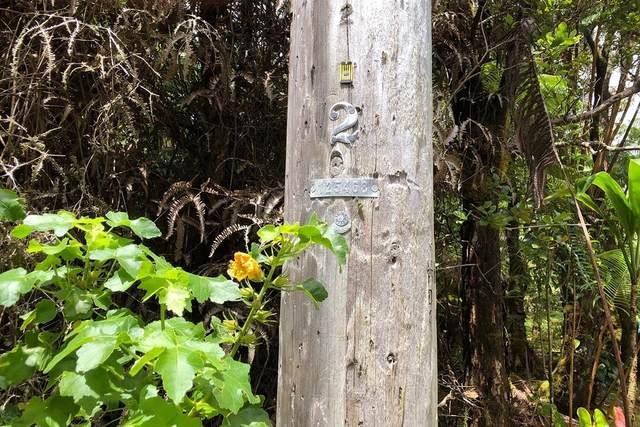 6TH ST, Volcano, HI 96785 (MLS #642343) :: Aloha Kona Realty, Inc.