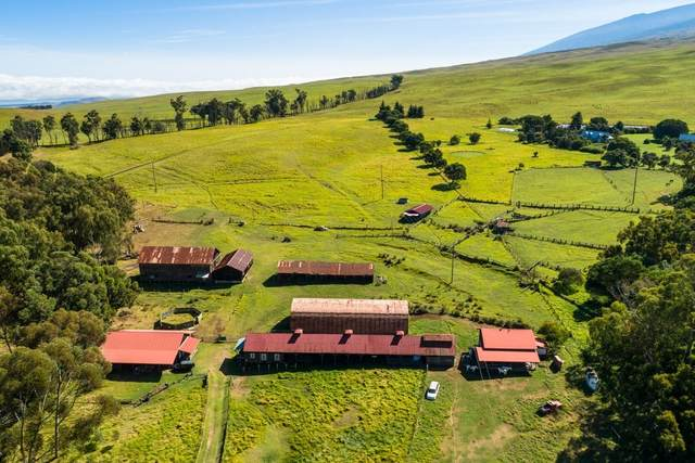 67 Saddle Rd, Kamuela, HI 96743 (MLS #642379) :: Aloha Kona Realty, Inc.