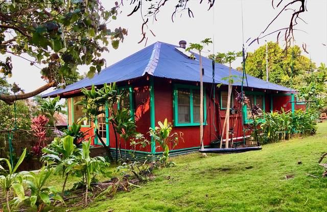 55-534 Banana Ranch Rd, Hawi, HI 96719 (MLS #642474) :: LUVA Real Estate