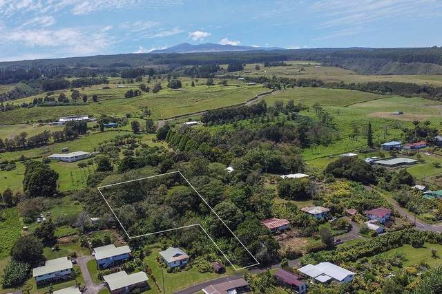 Address Not Published, Laupahoehoe, HI 96764 (MLS #642475) :: Corcoran Pacific Properties