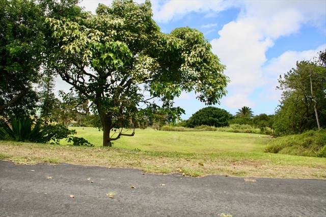 Kanaloa Pl, Naalehu, HI 96772 (MLS #642489) :: Team Lally