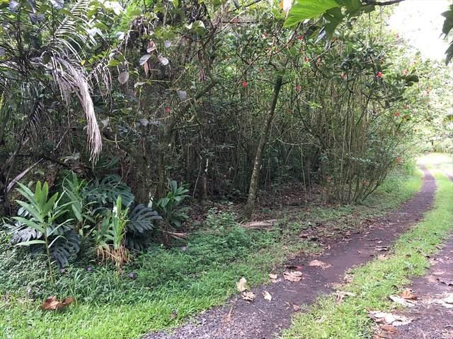 14-4776 Sadileck Rd, Pahoa, HI 96778 (MLS #642522) :: Aloha Kona Realty, Inc.