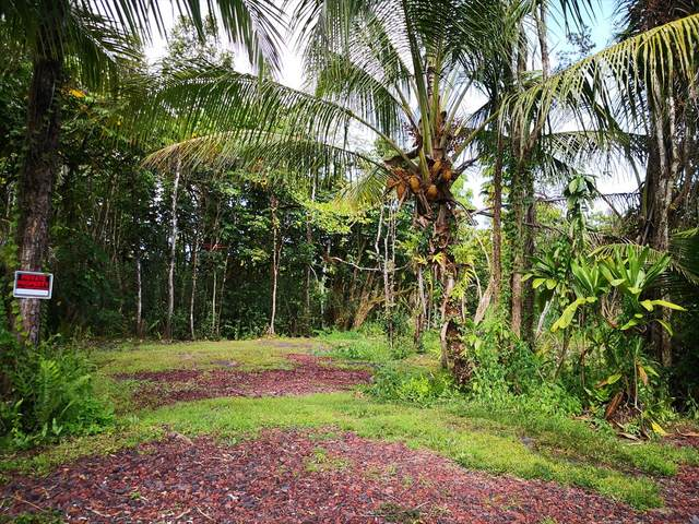 N Mahimahi St, Pahoa, HI 96778 (MLS #642579) :: Aloha Kona Realty, Inc.