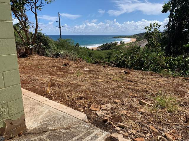 4509 Kaao Rd, Kealia, HI 96746 (MLS #642750) :: Kauai Exclusive Realty