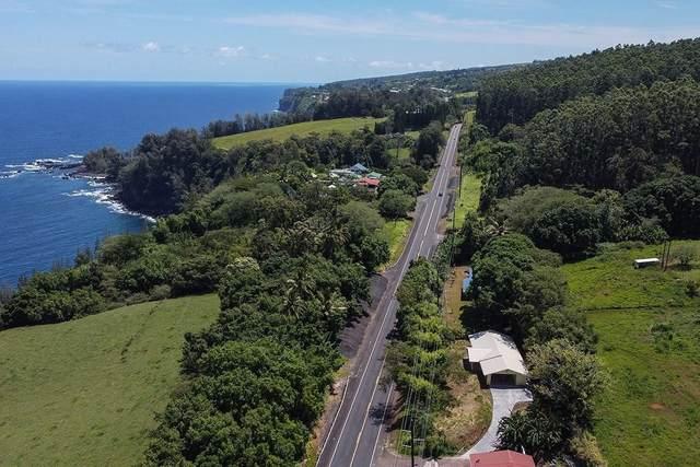 36-2687 Hawaii Belt Road, Ookala, HI 96774 (MLS #642827) :: Steven Moody