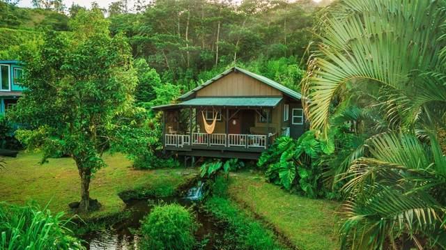 Kumu Rd, Hanalei, HI 96722 (MLS #643004) :: Kauai Exclusive Realty