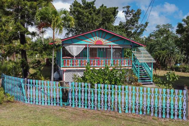 12-182 W Moanauli Lp, Pahoa, HI 96778 (MLS #643005) :: Iokua Real Estate, Inc.