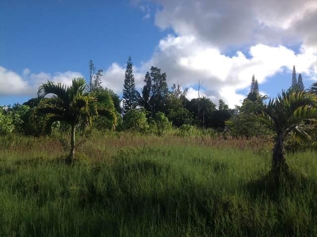 N Ina Lp, Pahoa, HI 96778 (MLS #643027) :: Aloha Kona Realty, Inc.