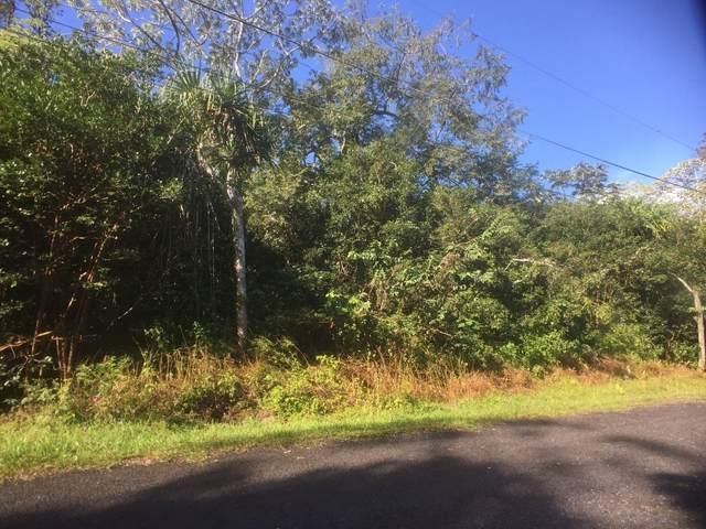 S Nenue St, Pahoa, HI 96778 (MLS #643052) :: Corcoran Pacific Properties