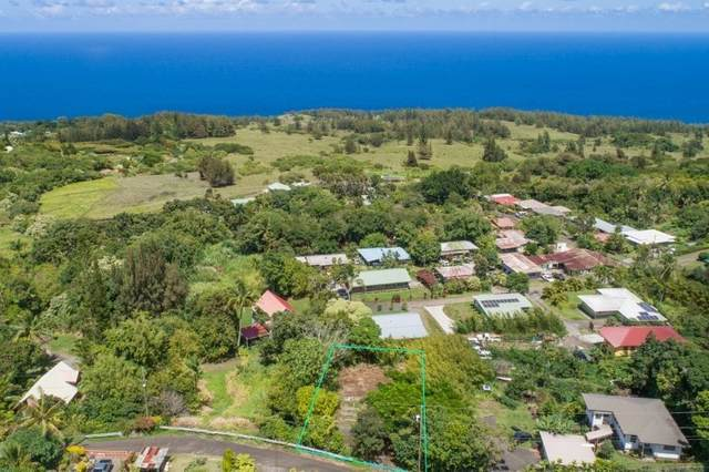 45-3462 Kawila St, Honokaa, HI 96727 (MLS #643099) :: Iokua Real Estate, Inc.