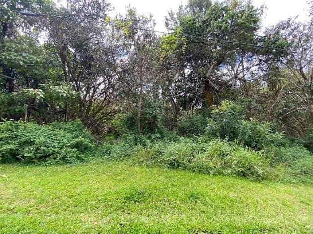 Huanui Rd, Captain Cook, HI 96704 (MLS #643129) :: Corcoran Pacific Properties