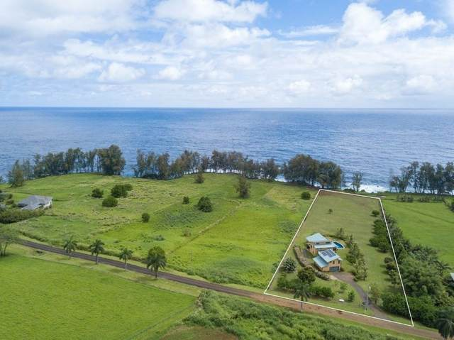 28-3296 Beach Road, Pepeekeo, HI 96783 (MLS #643148) :: Corcoran Pacific Properties