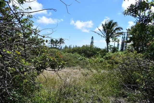 Address Not Published, Naalehu, HI 96772 (MLS #643196) :: Aloha Kona Realty, Inc.