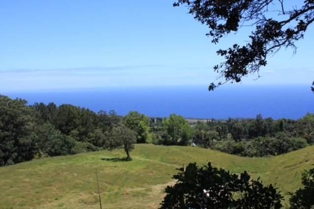 Paauilo Mauka Rd, Honokaa, HI 96727 (MLS #643271) :: Corcoran Pacific Properties