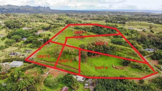 Kipapa Rd., Kapaa, HI 96746 (MLS #643375) :: Corcoran Pacific Properties