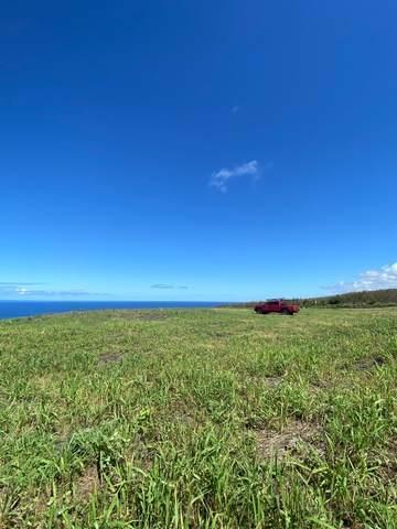 85-5355 Kiilae Rd, Captain Cook, HI 96704 (MLS #643465) :: Iokua Real Estate, Inc.