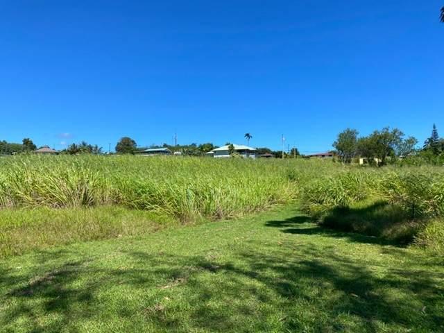 28-491 Kulaimano Rd, Pepeekeo, HI 96783 (MLS #643519) :: Corcoran Pacific Properties