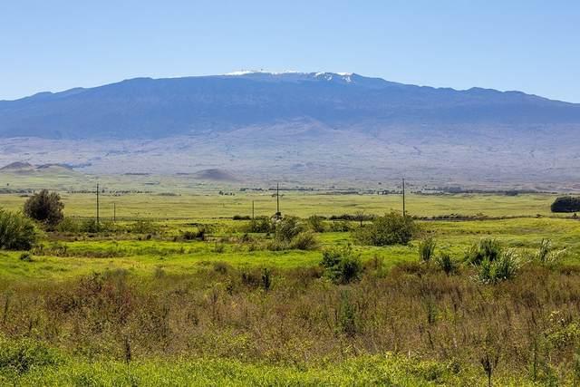 64-733 Mamalahoa Hwy, Kamuela, HI 96743 (MLS #643527) :: Corcoran Pacific Properties