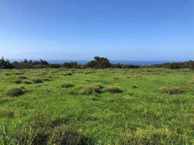 Address Not Published, Hawi, HI 96719 (MLS #643639) :: Corcoran Pacific Properties
