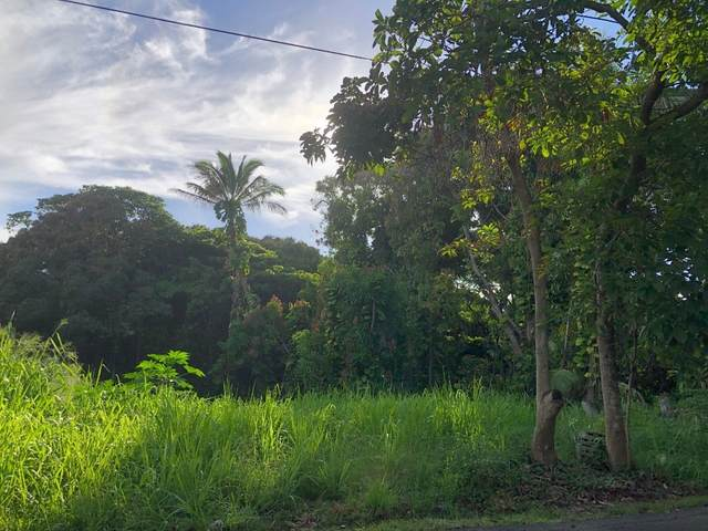 Address Not Published, Pahoa, HI 96778 (MLS #643658) :: Corcoran Pacific Properties