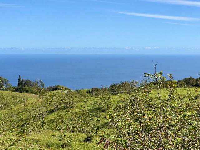 44-3109 Kula Kahiko Rd, Honokaa, HI 96727 (MLS #643693) :: Iokua Real Estate, Inc.