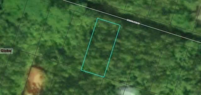 Kahoolawe Rd, Pahoa, HI 96778 (MLS #643736) :: Corcoran Pacific Properties