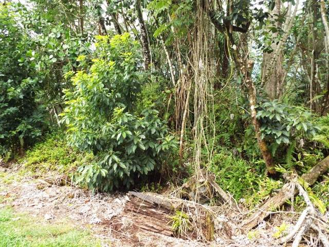 S Ohiki St, Pahoa, HI 96778 (MLS #643834) :: Corcoran Pacific Properties
