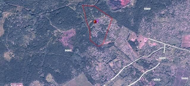 Address Not Published, Pahoa, HI 96778 (MLS #643849) :: Iokua Real Estate, Inc.