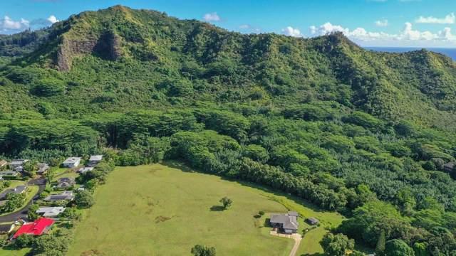 5552 Kuamoo Rd, Kapaa, HI 96746 (MLS #643862) :: Kauai Exclusive Realty